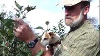 Fall Planting 2014  Youtube Shot